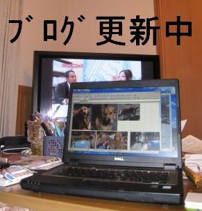 s_IMG_1881.jpg