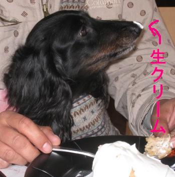 s_IMG_2005.jpg