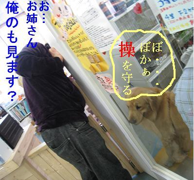 tiala_html_m2cc0ca88.jpg