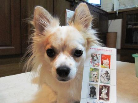 動物愛護記念切手と利久2。