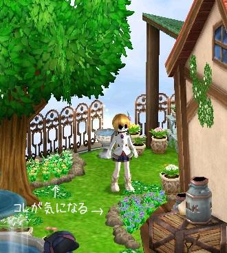 庭ギルド(・・・?)