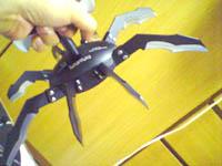 Turantula004.jpg