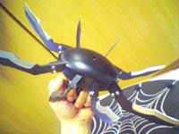 Turantula005.jpg
