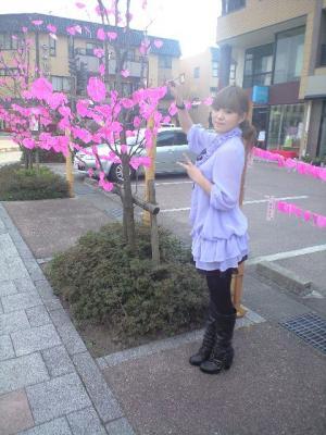 恋咲く桜並木2
