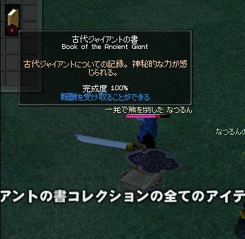 mabinogi_2008_11_29_007完成