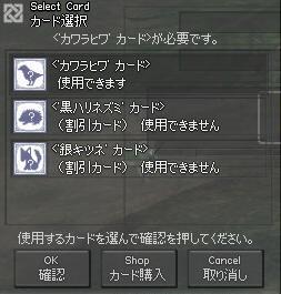 mabinogi_2009_01_02_005福袋ぺと