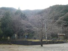 0121mizu4.jpg