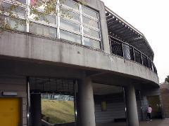 0402sakura9.jpg