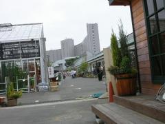0604nogawa2.jpg