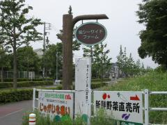 0701yasai1.jpg