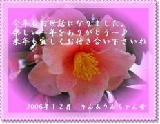 20061231091806.jpg