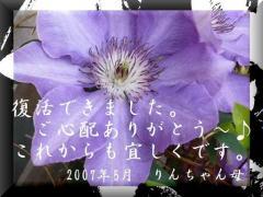 20070518222837.jpg