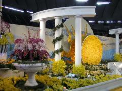 KIF_56790223ran1.jpg