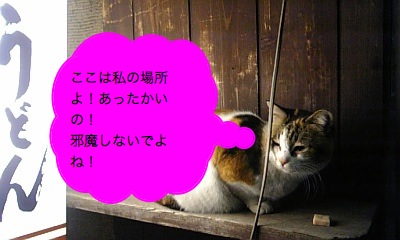 080214_200115_ed.jpg