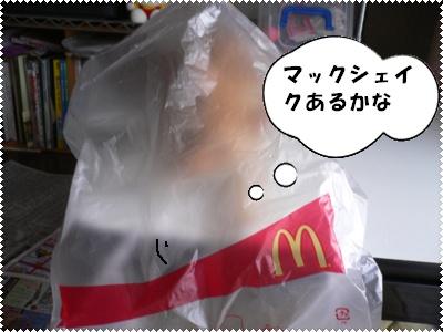 P1010167(マック袋)