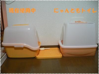 P1010135(トイレ1
