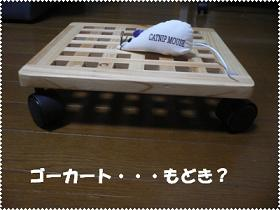 1222750274544683_P1010331(ゴーカート?)2