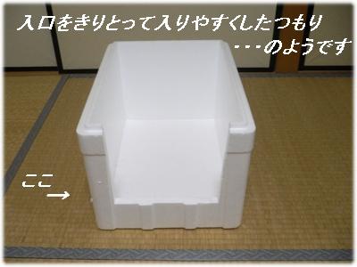_P1020035(工夫)