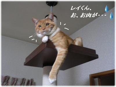 _P1020041(お肉)