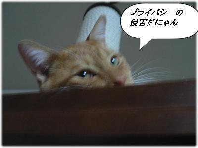 _P1020103(プライバシー)