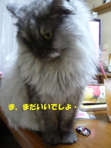 rin663_1.jpg