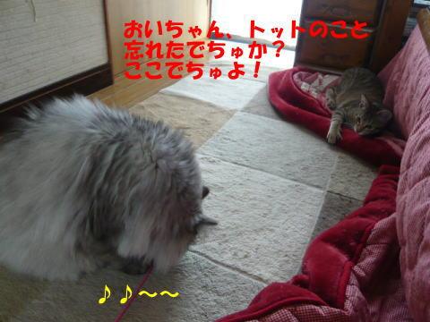 rt0057_1.jpg