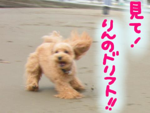 すんごい高速スピンです。