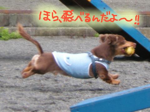 …足、短っ!!!