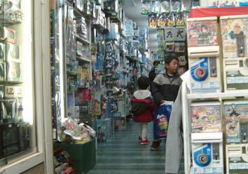shopping1middleS.jpg