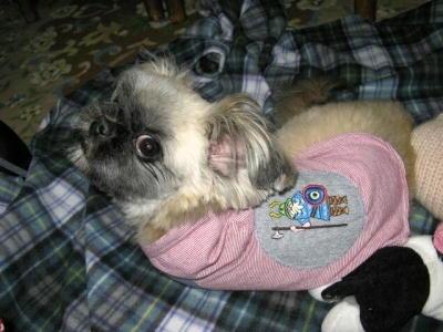 ママの古着de犬服2 フード付き