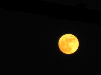 お月様は赤い月でした▽・w・▽