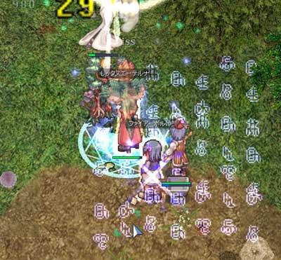 2009-01-13-03.jpg