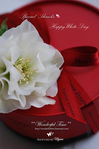 Happy White Day♪