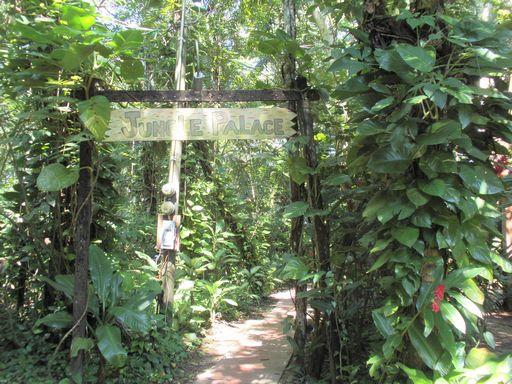 ジャングルパレス