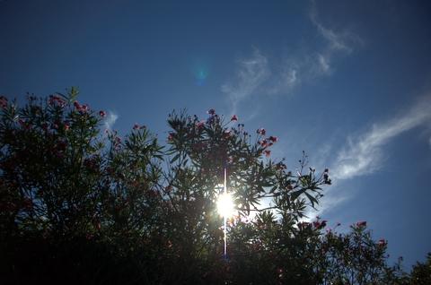 2006_0910-14.jpg