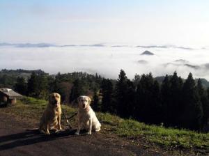 雲海とラムルイ