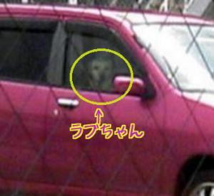 20070402092508.jpg