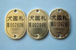 20070525105839.jpg