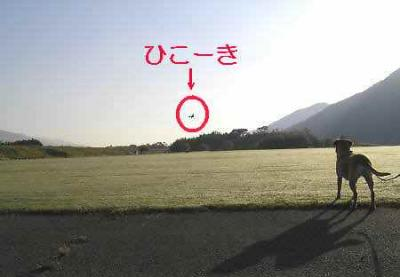 20071101210923.jpg