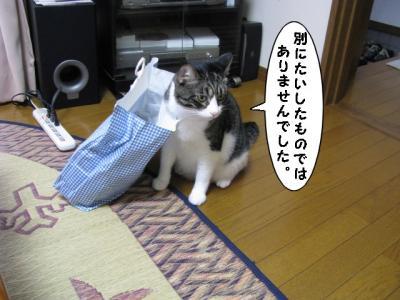 IMG_1326_1.jpg