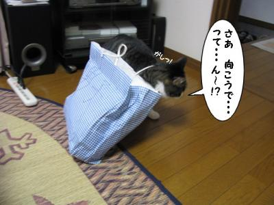 IMG_1327_1.jpg