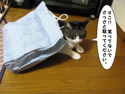IMG_1328_1.jpg