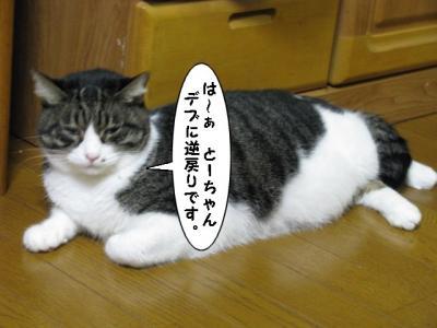 IMG_1375_1.jpg