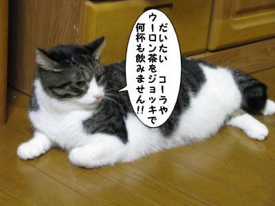 IMG_1376_1.jpg