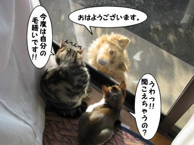 IMG_2316_1.jpg