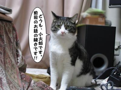 IMG_3812_1.jpg
