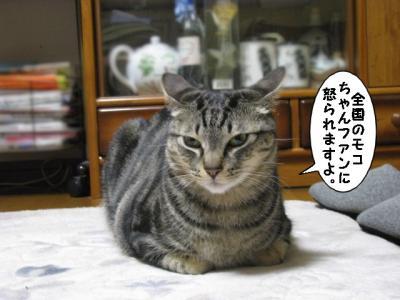 IMG_5218_1.jpg