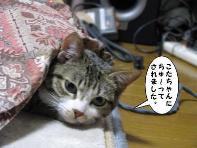 IMG_5453_1.jpg