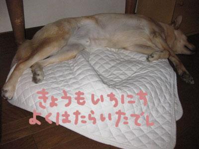 0314oyasumi.jpg