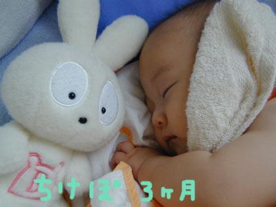 DSCN0683.jpg